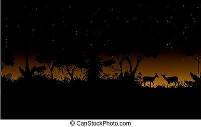 Collection stock jungle scenery of silhouette