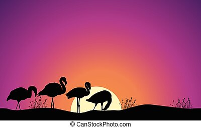 Collection stock of flamingo scene silhouettes