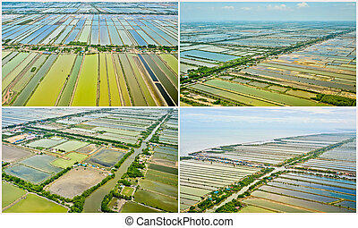 collections of Aerial view of rice field terraces in Thailand