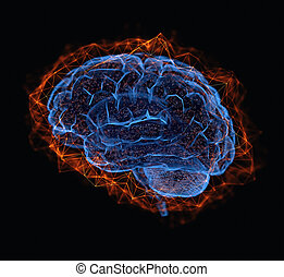 collegamenti, cervello, umano, potere