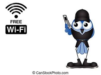collegamento, wifi, libero