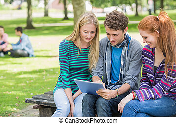 College students using tablet PC in park