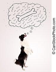 colley, pensée, bulle, sur, pensée, frontière, os