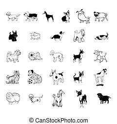 collezione, cane, clipart