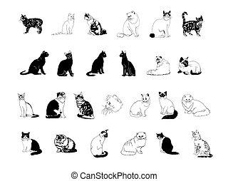 collezione, clipart, gatto