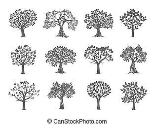 collezione, di, alberi., vettore, illustration.