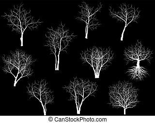 collezione, di, albero, silhouette
