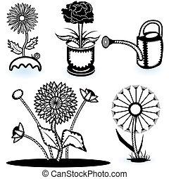 collezione, di, fiori, 2