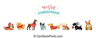 collezione, di, natale, cani, buon natale, illustrazioni, di, carino, animali domestici, con, accessori, come, uno, knited, cappelli, maglioni, sciarpe