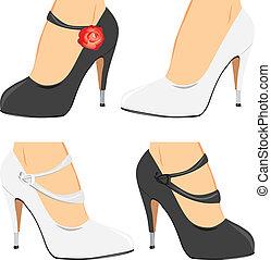 collezione, elegante, scarpe, femmina