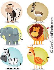 collezione, giungla, animali, africano