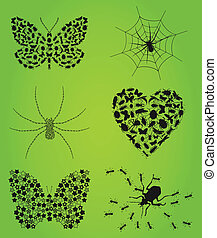 collezione, insects3