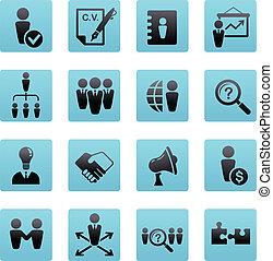 collezione, risorse umane, icone