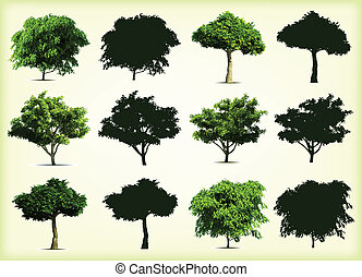 collezione, verde, alberi., vettore, illustrazione