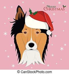 collie, card., saudação, santa, cão, áspero, chapéu, natal, vermelho