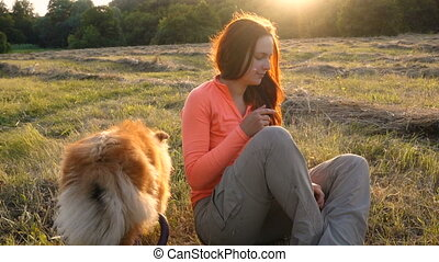 Collie dog with adorable girl on green field at sunlight