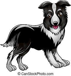 Collie - Funny illustration with collie drawn in cartoon...