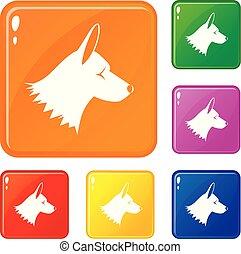 collie, jogo, ícones, cor, cão, vetorial