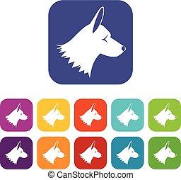 collie, jogo, cão, ícones