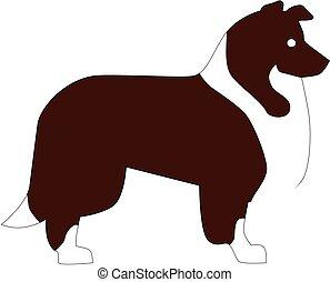 Collie pictogram
