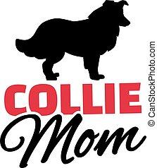 collie, silueta, cão, mãe