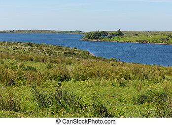 Colliford lake Bodmin Moor Cornwall