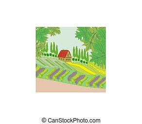 colline, paysage, rural, maison