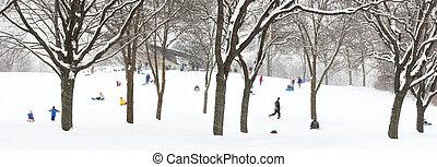colline, sledding