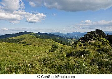 colline verdi