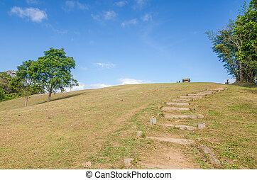 colline, walkway