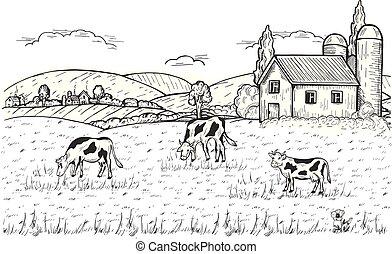 collines, ferme, au-dessous, village, rural, vaches, paysage