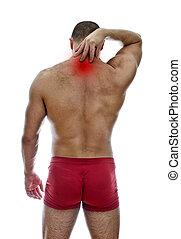 collo, pain., isolato, muscolare, white., uomo, vista...
