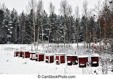 colmeias, inverno, vermelho