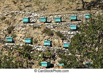colmenas, abejera, grecia