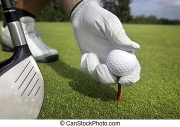 colocar, bola, baliza golfe