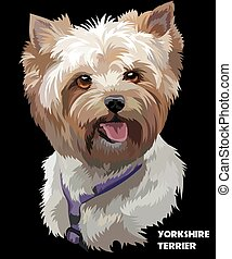 Coloful vector portrait of Yorkshire Terrier