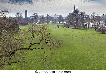 cologne rhine park in the winter