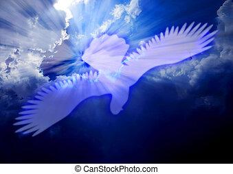 colomba, spirito, santo