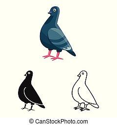 colomba, vettore, oggetto, pace, stock., isolato, simbolo., collezione, uccello, icona