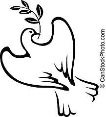 colombe, contour, branche