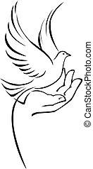 colombe, main