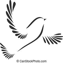 colombe, oiseau, ou