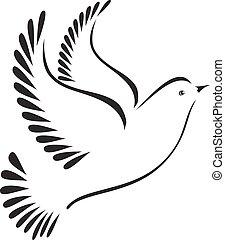 colombe, ou, oiseau