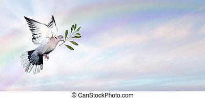 colombe paix