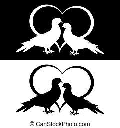 colombes, deux, silhouette, monochrome