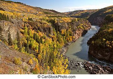 colombie, canyon, britannique, stikine, grandiose, rivière