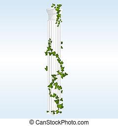 colonne, vecteur, lierre