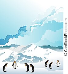 Antarctic penguins - Colony of Antarctic penguins on snow ...