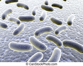 Colony of bacteria - Colony of pathogen bacteria - 3d render