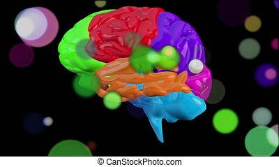 coloré, animation, tourner, brillamment, humain, fond, noir, cerveau, 3d